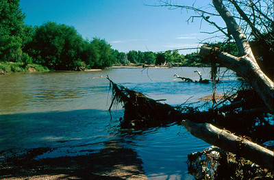 Platt River near Brighton, Colorado.