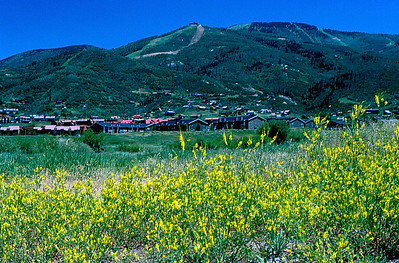 Steamboat Springs, Colorado (July 1987)