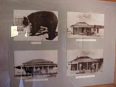 PHOTOS ON WALL OF BILLIARD HALL INCLUDE ONE OF ROY BEAN'S BEAR, BRUNO (Sept 22, 2000 at Langtry, Texas)