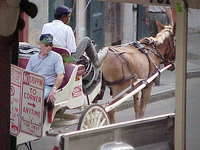 GARY THE BUGGY DRIVER (New Orleans, Sept 14, 2000)