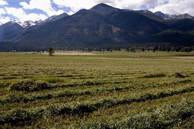SAME HAY FIELD -- Wallowa Valley between Joseph and Enterprise, Oregon (Sept 2004)