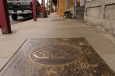 FROG WALK: Winners of the annual frog jumping contest are commemorated with bronze plaques embedded in the sidewalk on each side of the street in Angels Camp.