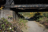 Trail Leads Under Trestle