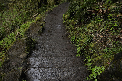 Muddy Steps Down North Falls Trail (Officially called Canyon Trail)