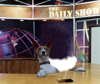 shamus-daily-show