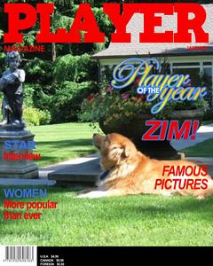 ZimPlayer