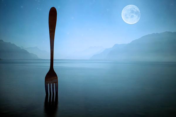 Night Fork