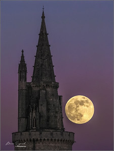 Moon Light    - pxret
