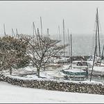 Neige  -  La Tour de Peilz  -  Suisse   - px