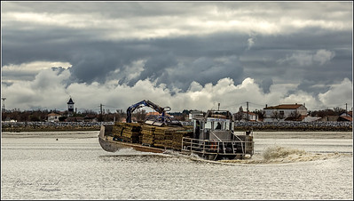 Oyster boat  -  Port des Barques  -  px