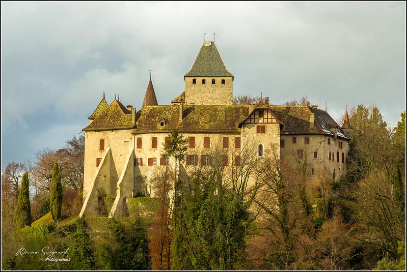 Château de Blonay  -  suisse