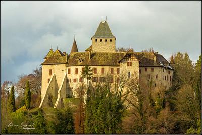 Château de Blonay  -  suisse   - px
