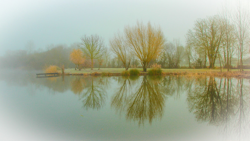 Misty Morning-px
