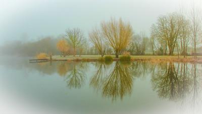 Misty Morning-px