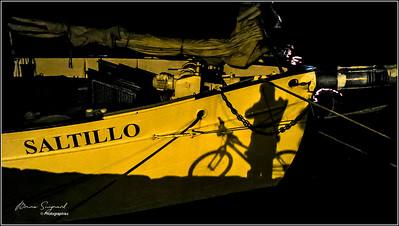 Old harbor  -  La Rochelle  - France  - px