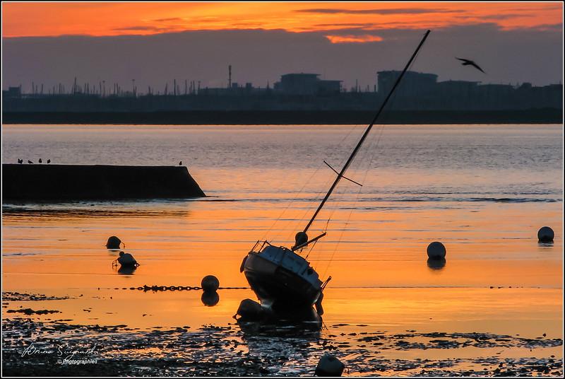 Port-neuf  -  La Rochelle  -  France - px