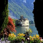 Castle of Chillon  -   Léman lake  -   suisse