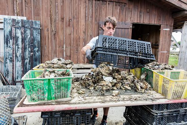 Visite aux Huîtres MarGo d'Anne Marquet et Nicolas Goderel, ostréiculteurs en attente du 1er label bio du Bassin d'Arcachon