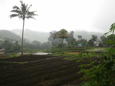 Rain/ Moni