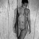 Boiserie - Woodwork