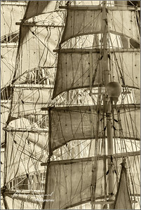 Sails and Ropes  -  px