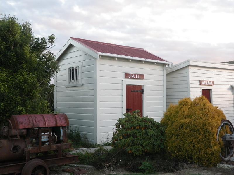 NZ (172) Curio Bay.JPG
