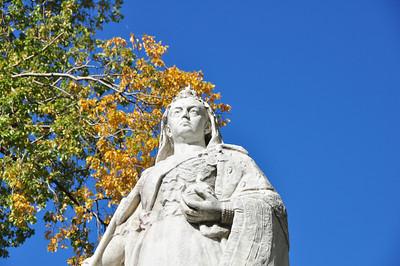 Queen Vic - Dunedin