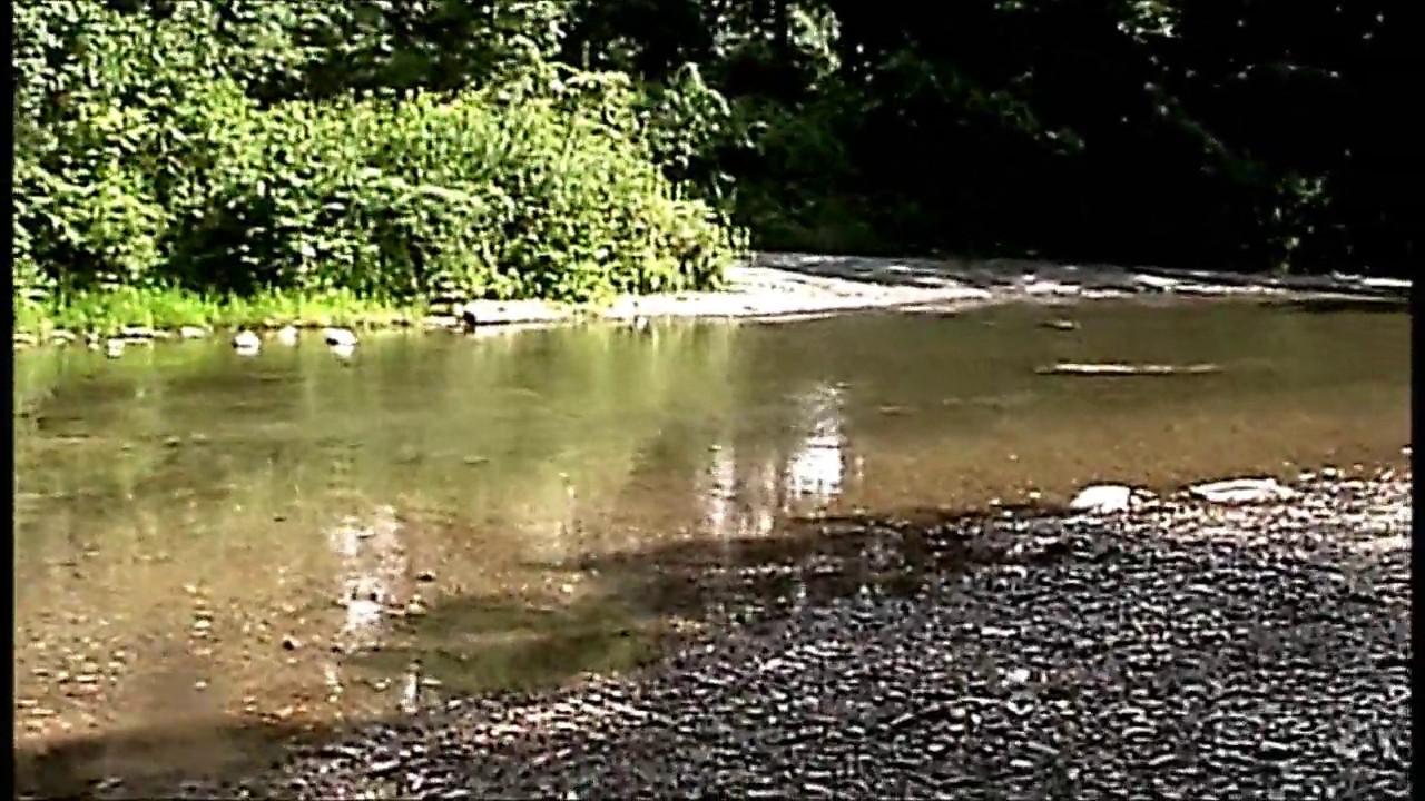 Cedar Creek, Appalachian Mountains