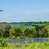 DSR_20130416Ennis Bluebonnets95-Edit