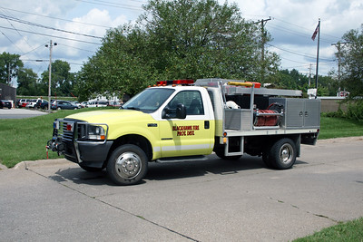 BLACKHAWK BRUSH 1  2001 FORD F450 - ALEXIS