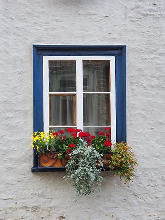 Window Box - Vieux Québec, Canada