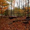 Fall Splendour - Credit River trails, Mississauga, Ontario, Canada