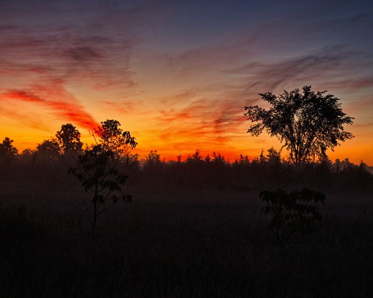 'Pre Dawn' - Prince Edward County