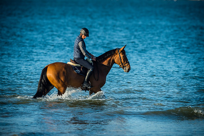 La Baule, France : Steve GUERDAT (SUI) riding ALAMO on the beach during the International Show Jumping of La Baule 2018 (Jumping International de la Baule), on May 20, 2018, in La Baule, France - Photo Christophe Bricot