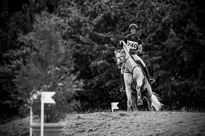 France, Marnes-la-Coquette : SIX Christopher riding TOTEM DE BRECEY during the CCI4*-S-FFE competition of the Jardy Eventing Show 2020, July 11th, at Haras de Jardy,  Photo Christophe Bricot.