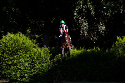 France, Marnes-la-Coquette :  during the CCI4*-S-FFE competition of the Jardy Eventing Show 2020, July 11th, at Haras de Jardy,  Photo Christophe Bricot.
