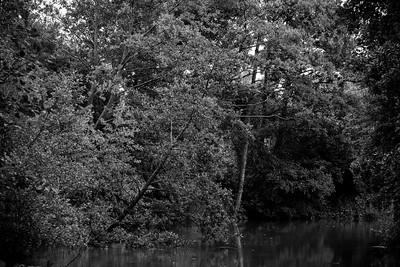 Au fil de l'Authie, reportage, documentaire sur une rivière du Nord de la France , Hauts de France - Sujet d'Alain Combémorel, Photo Christophe Bricot.