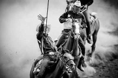 """Festival Equiblues - Edition 2008 Festival Western """"equiblues"""" à Saint-Agrève dans l'ardèche. Réunion des passionnés d'équitation western et country music. Spectacles le soir et groupe américain et australien. Festival d'équitation de travail et épreuvs de RODEO à cheval et sur taureaux (broncos et bull rider)  © Christophe Bricot   © Christophe Bricot  www.bricotchristophe.com"""