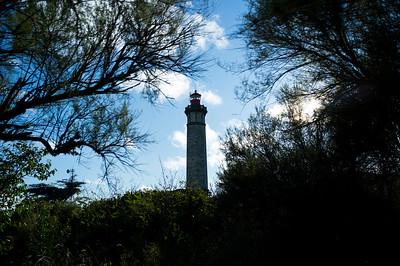 Ile de Ré, Ars en Ré, le phare des baleines de nuit