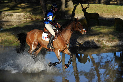 France, Fontainebleau :  MAXIME LIVIO RIDING ON OPIUM DE VERRIERES  in the Cross Country phase of the Eventing competition of the Crazyride, CICO 3* eventing in Fontainebleau -  20140322 - Photo Christophe Bricot