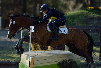 France, Fontainebleau :  VITTORIA PANIZZON RIDING ON MERLOTS MAGIC  in the Cross Country phase of the Eventing competition of the Crazyride, CICO 3* eventing in Fontainebleau -  20140322 - Photo Christophe Bricot