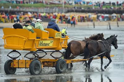 COURSES :  ATTELAGE COURSES SUR LA PLAGE DE CUXHANEN/DUHNER - 18/08/13 - PHOTO CHRISTOPHE BRICOT -  DUHNEN Mudflat Courses à Cuxhaven Le parc national de la mer des Wadden de Hambourg n'est pas seulement un site du patrimoine mondial de l'UNESCO, mais il est aussi le lieu pour ce qui doit sûrement être l'une des courses de chevaux les plus étranges du monde: les Duhnen Mudflat Courses près de Cuxhaven. Dans le contexte dramatique de l'estuaire de l'Elbe, une voie de navigation internationale, les chevaux et leurs jockeys participer à des courses à travers les vasières détenus à marée basse. Les visiteurs peuvent observer ce spectacle remarquable se dérouler à partir de la digue à proximité.