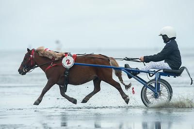 COURSES :  COURSE DE PONEYS SHETLAND COURSES SUR LA PLAGE DE CUXHANEN/DUHNER - 18/08/13 - PHOTO CHRISTOPHE BRICOT -  DUHNEN Mudflat Courses à Cuxhaven Le parc national de la mer des Wadden de Hambourg n'est pas seulement un site du patrimoine mondial de l'UNESCO, mais il est aussi le lieu pour ce qui doit sûrement être l'une des courses de chevaux les plus étranges du monde: les Duhnen Mudflat Courses près de Cuxhaven. Dans le contexte dramatique de l'estuaire de l'Elbe, une voie de navigation internationale, les chevaux et leurs jockeys participer à des courses à travers les vasières détenus à marée basse. Les visiteurs peuvent observer ce spectacle remarquable se dérouler à partir de la digue à proximité.