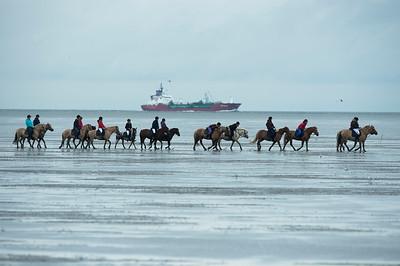 COURSES :  ILLUSTRATION PONEYS AVEC EN ARRIÈRE-PLAN LES BATEAUX, PÉTROLIERS... COURSES SUR LA PLAGE DE CUXHANEN/DUHNER - 18/08/13 - PHOTO CHRISTOPHE BRICOT -  DUHNEN Mudflat Courses à Cuxhaven Le parc national de la mer des Wadden de Hambourg n'est pas