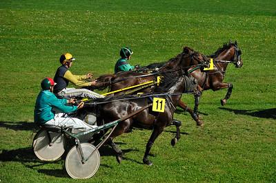 COURSES HIPPIQUES : LE DRIVER G.A.LACHEMI (N°11) ET SAPHIR DU PIRAI EN ACTION LORS DES COURSES HIPPIQUES DE MAMERS - CATÉGORIE TROT - HIPPODROME DE LA PLAINE SAINT-JEAN À  MAMERS - LUNDI 24 MAI 2010 - DIGITAL IMAGE - © CHRISTOPHE BRICOT