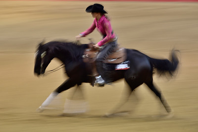 France, Chassieu : Laura Duponchel riding Rocky Lena Dream during the reining International Competition of Equita Lyon, on October 29th , 2016, in Chassieu, France - Photo Christophe Bricot