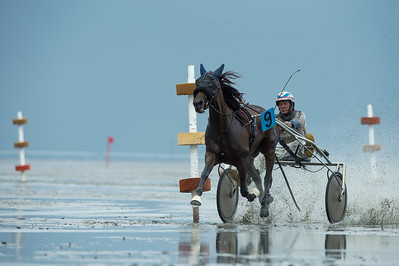 COURSES :  SIMON WOUDSTRA SUR BE STUCK PAASLOO - COURSES SUR LA PLAGE DE CUXHANEN/DUHNER - 18/08/13 - PHOTO CHRISTOPHE BRICOT -  DUHNEN Mudflat Courses à Cuxhaven Le parc national de la mer des Wadden de Hambourg n'est pas seulement un site du patrimoine mondial de l'UNESCO, mais il est aussi le lieu pour ce qui doit sûrement être l'une des courses de chevaux les plus étranges du monde: les Duhnen Mudflat Courses près de Cuxhaven. Dans le contexte dramatique de l'estuaire de l'Elbe, une voie de navigation internationale, les chevaux et leurs jockeys participer à des courses à travers les vasières détenus à marée basse. Les visiteurs peuvent observer ce spectacle remarquable se dérouler à partir de la digue à proximité.