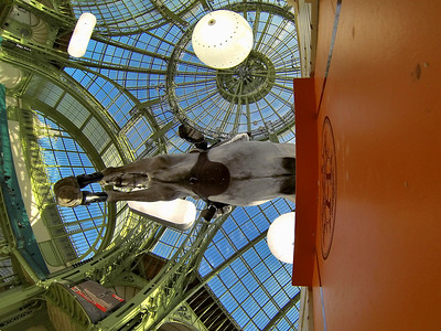 PARIS, GRAND PALAIS, SAUT HERMES 2013 -  Kent FARRINGTON (USA). Uceko - GRAND PRIX HERMES 2013 - -12/13/14 AVRIL 2013 - JUMPING CSI5*- PHOTO © CHRISTOPHE BRICOT