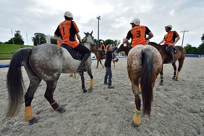 HORSEBALL : MATCH ENTRE CHAMBLY (BLANC) ET FLEURY SUR ORNE (A1) -  CHAMPIONNATS DE FRANCE HORSE BALL 2013 - HARAS DE JARDY, MARNE LA COQUETTE, France. (Photo Christophe Bricot)