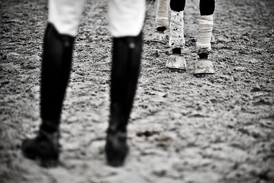 HORSEBALL : JAMBES, BANDE DE POLO, CLOCHES, BOTTES -  CHAMPIONNATS DE FRANCE HORSE BALL 2013 - HARAS DE JARDY, MARNE LA COQUETTE, France. (Photo Christophe Bricot)